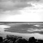 Les marées